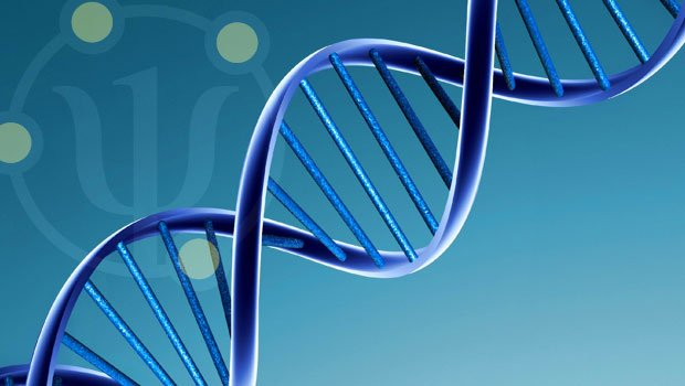 "Una storia : ""Heredity before genetics"""
